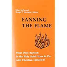 Fanning the Flame: What Does Baptism in the Holy Spirit Have to Dowith Christian Initiation