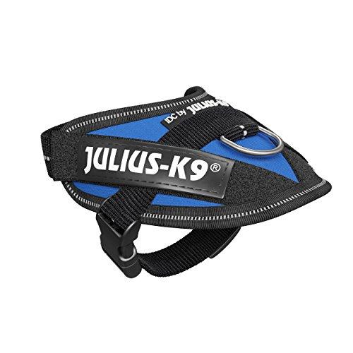 Julius K9 16IDC-B-B1 IDC - Arnés de alimentación (Talla 1), Color Azul