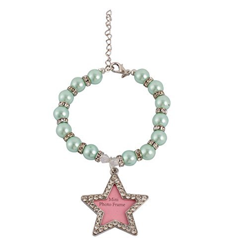 dada Bead Linked Star Frame dado forma da foto Design Tag Dog Pet colar azul ()