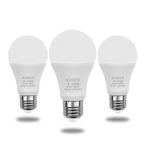 Eco Lamps Led Lights