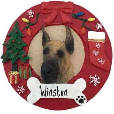 Great Dane - Fawn Personalized Ornament - (Unique Christmas Tree Ornament -  Classic Decor for - Amazon.com: Great Dane - Fawn Personalized Ornament - (Unique