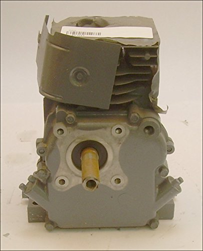 491037 3.5HP Shortblock, 3/4'' x 2 5/16'' Horizontal Shaft, Ball Bearing, repalces 491041 Briggs & Stratton Shortblock by Briggs & Stratton