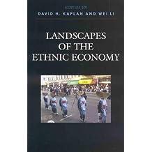 Landscapes of the Ethnic Economy (English Edition)
