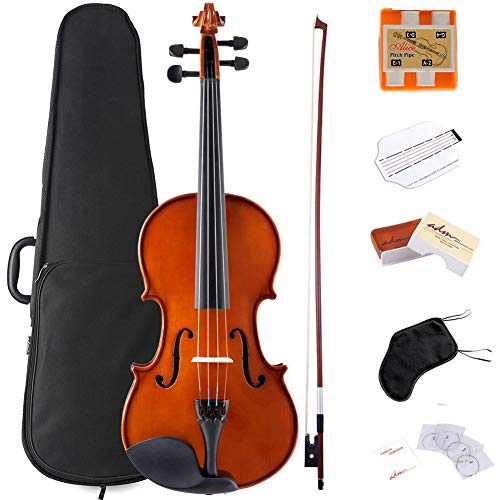 ADM Violin 4/4 Full Size Solidwood Ebony Pegs Violin Beginner Student Advanced Kit with Violin Case, Ebony Frog Violin Bow and Rosin, etc