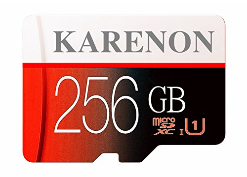Karenon 256GB Micro SD SDXC Memory Card High Speed Class 10 with Micro SD Adapter(D49-KR256) by Karenon
