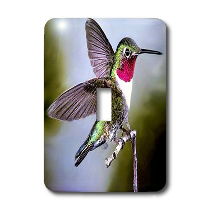 Hummingbird Toggle Light Switchplate - lsp_960_1 Birds - Hummingbird, Bird - Light Switch Covers - single toggle switch
