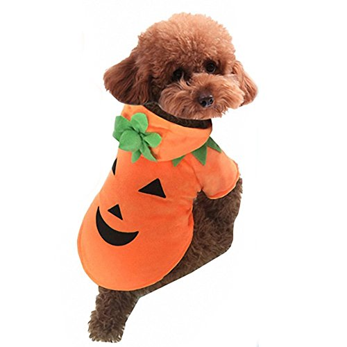 Cute Cartoon Pet Dog Puppy Teddy Halloween Christmas Funny Pumpkin Costume Hoodie Coat Jacket Clothes Soft Coral Velvet Fleece Winter Warm Hooded Sweater Jumpsuit Outfit Apparel for Small Dogs (Cat Scratching Post Halloween Costume)