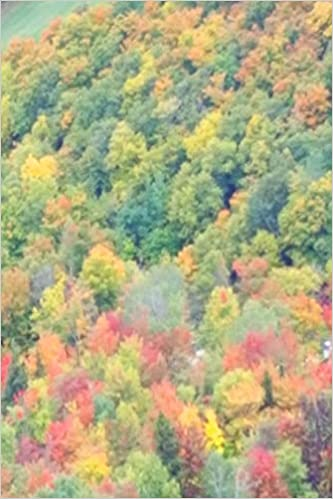 2019 Weekly Planner Fall Foliage Mountain View 134 Pages: (Notebook