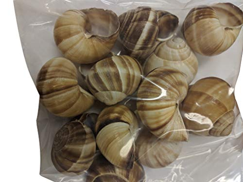 Premium Escargot Wild Burgundy Snails  Rated Number One  Best For Escargot Recipes, Various Sizes  (1 Dozen Shells)