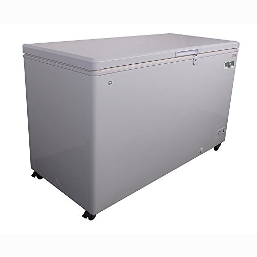Kelvinator Commercial KCCF170WH Solid Top Chest