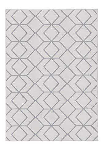 Antep Rugs Kashan King Collection Trellis Polypropylene Indoor Area Rug (Grey/Cream, 8' x 10')