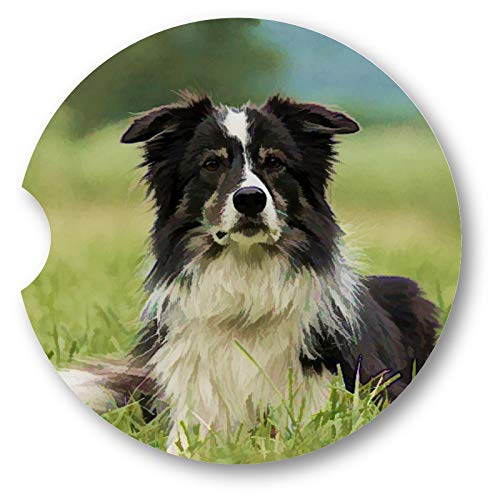 Simulated Oil Painting Border Collie Portrait Sandstone Car Coasters - Set of 2