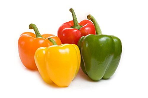Mini Paprika Dwarf Small Bell Pepper Seeds Mixed Color Blend 25 PCS