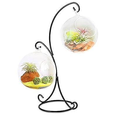 YBLNTEK Ornament Display Stand Air Plant Metal Stand Holder for Hanging Glass Terrarium Globe Ball, Witch Ball, Lantern (Black): Home & Kitchen