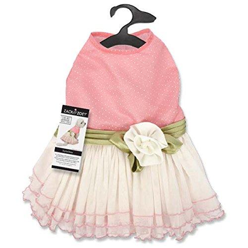 Zack & Zoey Taylor Dress, - Costume Taylor