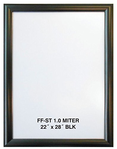 Amazon.com - 22x28 Black Aluminum Snap Frame 1.0\