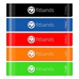 Resistance Bands | Premium Set Of 5 Stylish Workout Bands | 10 Inch Resistance Loops Best for Exercise and Fitness | Exercise Bands Set Includes Online Videos, Workout Challenges, and Travel Bag | By Love Fitbands