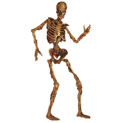 Beistle 00130 Jointed Skeleton Figurine, 6-Feet (Paper Cutout) (Skeletons Halloween)