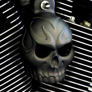 Skull Cover Horn (Textured Black Powder Coat Evil Twin Skull Horn Cover)