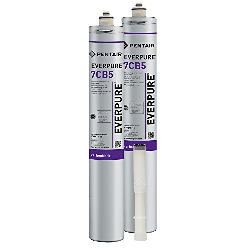 Replacement Filter Set for Everpure Kleensteam II Twin Filtration System ()