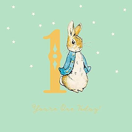 Amazon Peter Rabbit Boy 1st Birthday Card Office Products