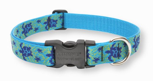 "LupinePet Originals 1"" Turtle Reef 12-20"" Adjustable Collar for Medium and Larger Dogs"