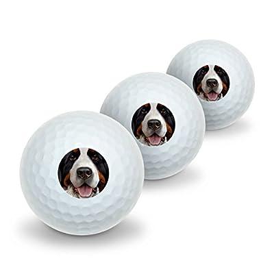 Bernese Mountain Dog Face Closeup Novelty Golf Balls 3 Pack