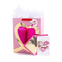 Hallmark Valentine's Day Large Gift Bag with Tissue Paper and Signature Greeting Card (Heart Honeycomb On Pink)