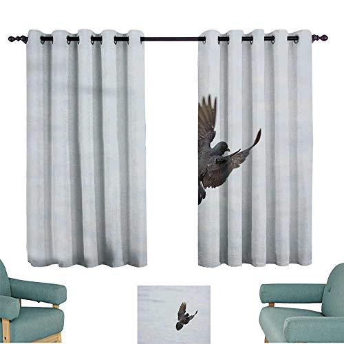 "WinfreyDecor Decor Curtains Male Rock Pigion (Columba Livia) Darkening and Thermal Insulating 55"" Wx72 L"