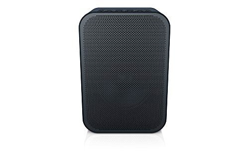 Bluesound PULSE FLEX Portable Wireless Multi-room Smart Speaker with Bluetooth - Black