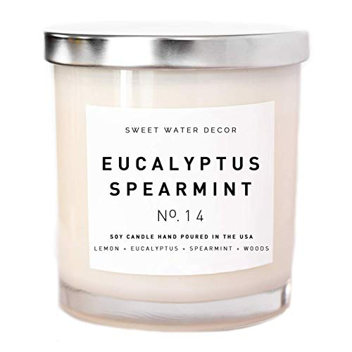 Eucalyptus Spearmint Natural Soy Wax Candle White Jar Lemon Orange Parsley Lavender Spearmint Sage Woods Spa Scented Candle Made in USA Lead Free Cotton Wicks Modern Rustic Home Decor Gift For Her - Soy Scented Eucalyptus Wax