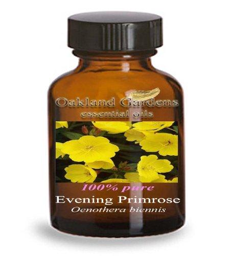 EVENING PRIMROSE Essential Oil (30 mL Euro Dropper) - 100% PURE Therapeutic Grade Essential Oil - Oenothera biennis - Essential Oil By Oakland Gardens