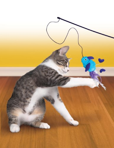 Kong active dangle feet teaser wand cat toy new ebay for Cat wand toys