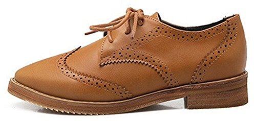 Sfnld Moda Mujer Encaje Hasta Pointy Low Cut Oxfords Mocasines De Tacón Bajo Zapatos Marrón