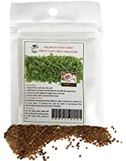 SunGrow Aquarium Grass Seeds, 12 Grams, Creates Lush Green Carpet Plant, Native Ecosystem for Fish, Fast and Easy Propagation, Ideal for Beginners and Pros, Salatigasis, 1 Pack