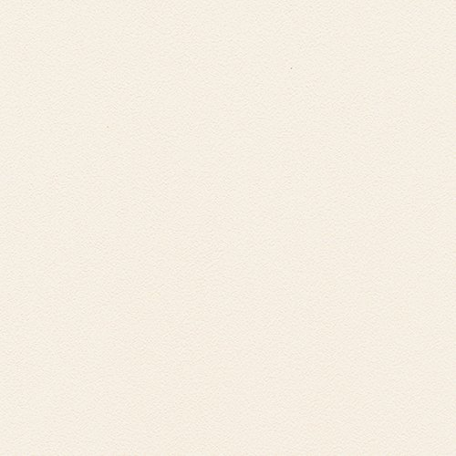 シンコール  壁紙43m  ビニル  ホワイト  SW-2465 B075BV2GZF 43m|ホワイト