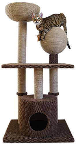 Rosewood Catwalk Collection Alfombra y Cuerda rascador para Gatos con Escalera de 1,24 m de Altura: Amazon.es: Productos para mascotas