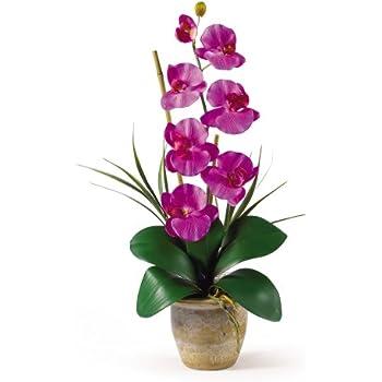 Amazon nearly natural 1016 or phalaenopsis silk orchid flower nearly natural 1016 or phalaenopsis silk orchid flower arrangement mightylinksfo