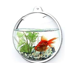 Singeek creative wall mounted round fish tank for Fish bowl amazon