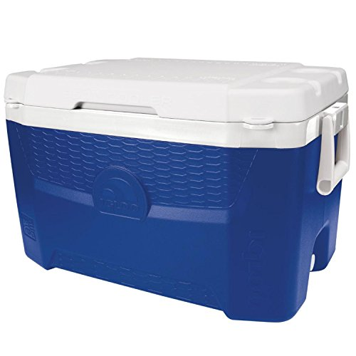 - Igloo Quantum 55 - Majestic Blue/White, Blue, N/A