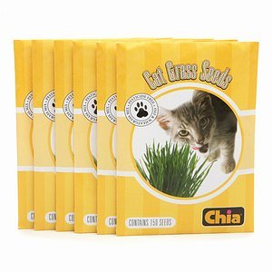 CHIA Cat Grass Refill Seeds 6 - Grass Chia Pet