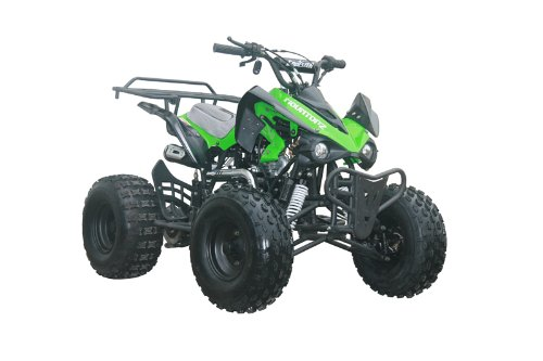 125cc Sports ATV 8'' Tires with Reverse, Green by Coolster (Image #4)
