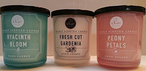 Variety Bundle of 3 DW Home Richly Scented Candles in Peony Petals,Fresh Cut Gardenia, and Hyacinth Bloom Scents. 4 oz each candle