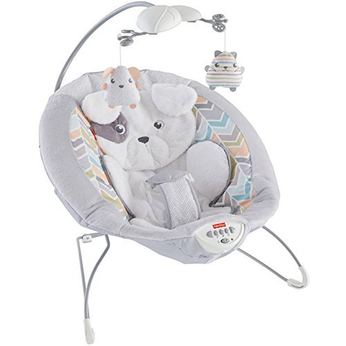 Fisher Price Baby Infant-Toddler Sweet Snugapuppy Dreams Deluxe Bouncers, Rocker and Sleeper with 2 Hanging Toys by PnB Deals