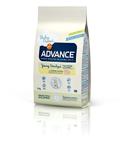 ADVANCE - ADVANCE YOUNG STERILIZED - 400 g: Amazon.es: Productos para mascotas