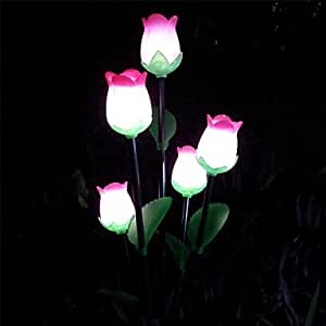 LTY-LED Solar Powered Lawn Light Garden Light Decorative Light Flower Light(Leh-28029)(TYN) , Pink