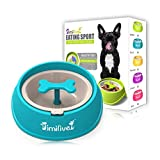 Pet Dog Cat Slow Feeder Bowl Interactive Chew Toy Fun Raised Feeder Eating Sporting Bowl Removable Tray Dog Cat Animal Food Container Dish Puppy Bloat Stop Anti-Choke Slow Down Eating Dringking