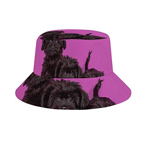 (Hatmore - Sun Hat for Men/Women,Outdoor Packable Travel Bucket Cap Hats for Safari Fishing Hiking Beach Golf - Affenpinscher Puppies Dog)