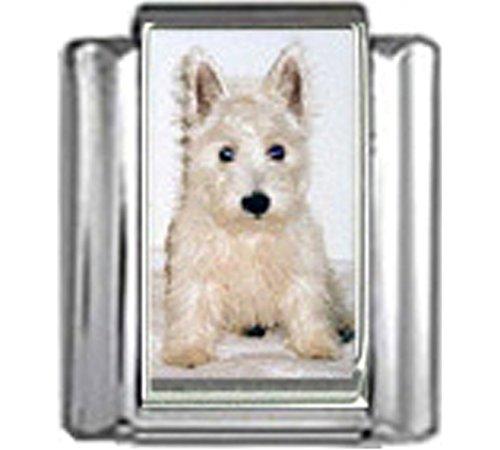 Stylysh Charms WEST Highland White Terrier Dog Photo Italian 9mm Link DG394