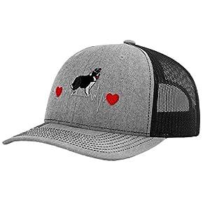 Richardson Structured Mesh Trucker Hat Dog Border Collie Lifeline A Embroidery 41